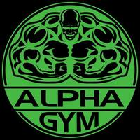 Alpha Gym featured image