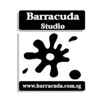 Barracuda Studio (Face) featured image