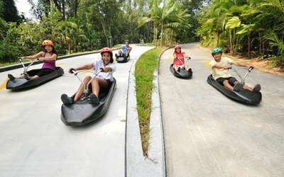 Admission to Luge & Skyride, Return Cable Car Ride, and a Segway Fun Ride for 1 Adult