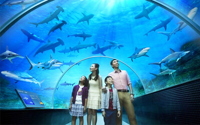 SEA Aquarium + Adventure Cove + Good Old Days Buffet Dinner / Indian Cuisine Meal for 1 Adult