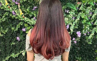 Hair Colouring with Wash and Treatment For 1 Person