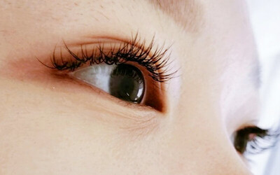 [Flash] 100-Piece Korean 3D Eyelash Extension with Eyebrow Shaping and Eye Treatment for 1 Person