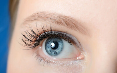 Mink Classic Eyelash Extension + Free Retouch 1x