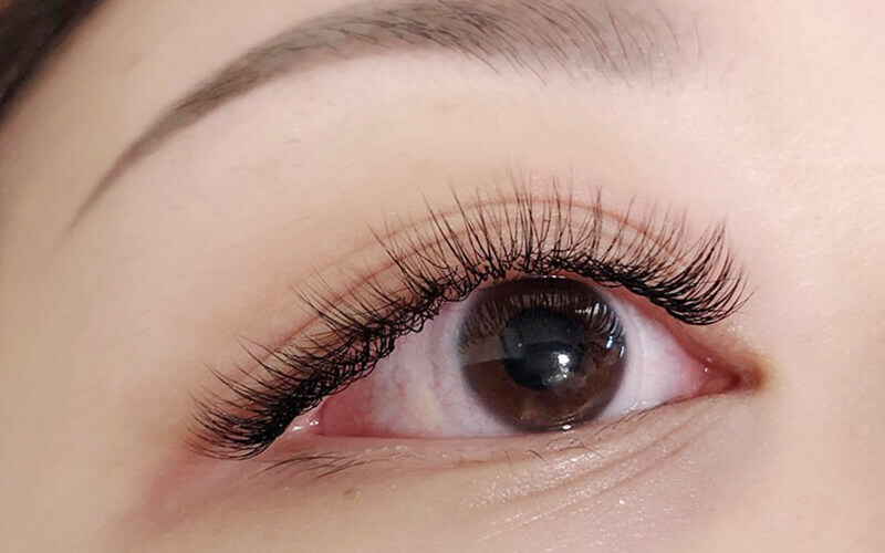 Unlimited Natural Eyelash Extension for 1 Person