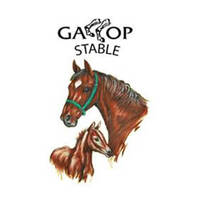 Gallop Stable @ Horsecity featured image