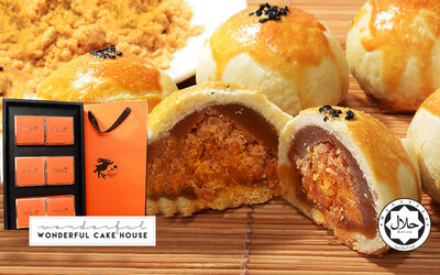 [Mid-Autumn] (Package D) Six (6) Pieces of Taiwanese Chicken Floss Egg Yolk Mooncake