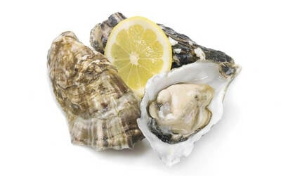 [HOT 12.12] Buy 1 Free 1 Live Fresh Oyster