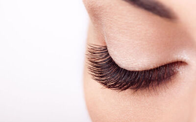 1x Trap Volume Eyelash Extension