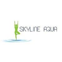 Skyline Aqua (Fave) featured image