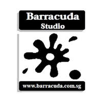 Barracuda Studio (Hair) featured image