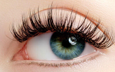 1x Classic Premium Eyelash Extension + Free Lash Brush