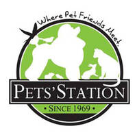 PETS' STATION SINGAPORE featured image