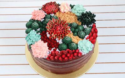 5-Inch Designer Cacti Cake