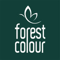 Forest Colour Retail & Spa featured image