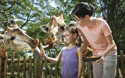 Admission to Singapore Zoo with Tram Ride for 1 Child