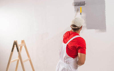 House Painting Service (5 Rooms)