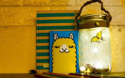 [V-DAY 2019] 2-Hour Valentine Butterfly Jar Desklight Workshop for 1 Person
