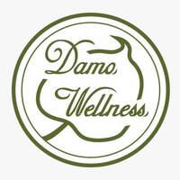 Damo Wellness featured image