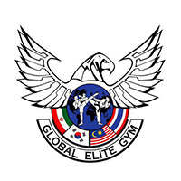 Global Elite Gym (Fave) featured image