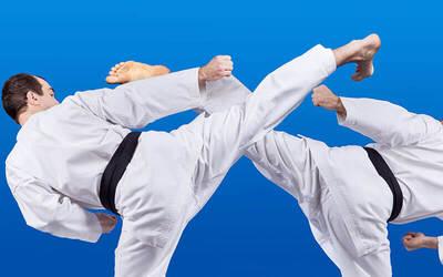 Taekwondo Fundamental Trial Class for 1 Child