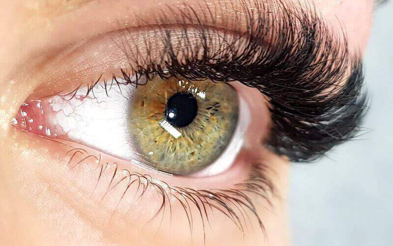 1x Y-Lashes Extensions + Free Mascara Wand