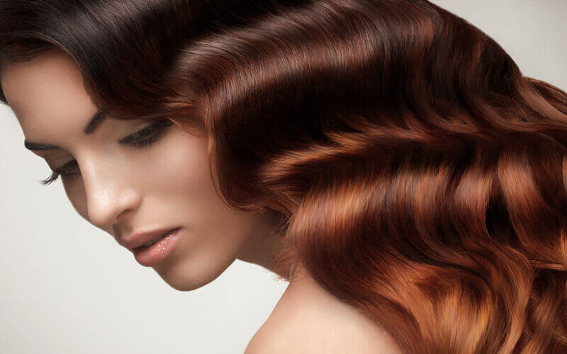 Mucota Intensive Hair Treatment with Wash and Blow + Cut for 1 Person