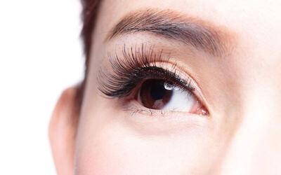 Volume Eyelashes Extensions
