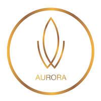 Aurora Hair Art featured image