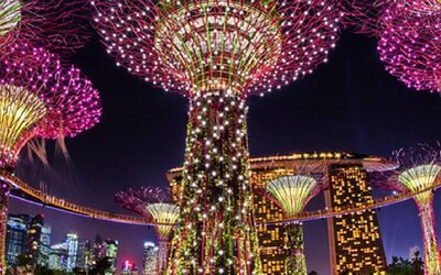 Admission to Gardens By The Bay: Flower Dome + Cloud Forest for 1 Child