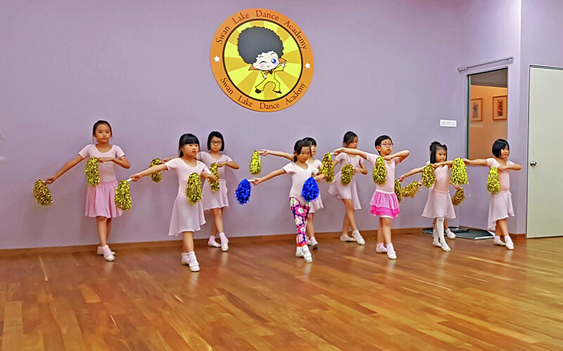 Swan Lake Dance Academy featured image.