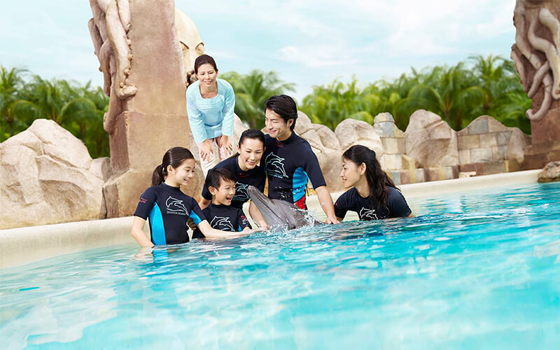 Sentosa Dolphin Island (Triba-East Travel) featured image.