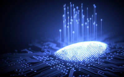 Fingerprint Analysis and Talent Profiling Workshop for 1 Person