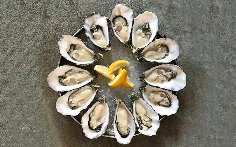 12 (12) Around-the-World Oysters