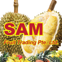 919 Durian Fruit Trading / Sam Fruit Trading featured image