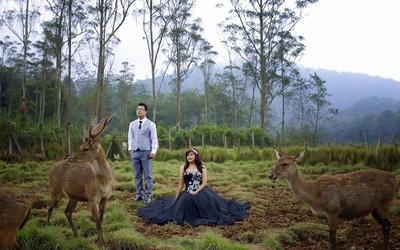 Outdoor Prewedding Photography