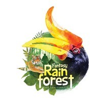 Fantasy Rainforest featured image