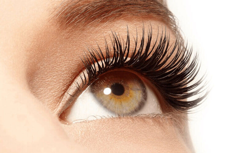 1x Eyelash Natural by Assistant