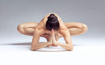 Asana Yoga Precision & Alignment