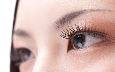 1x Double Eyelash Extension + Lash Brush