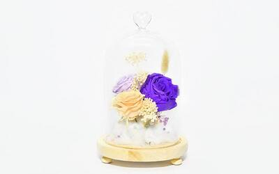 3-Enchanted Lasting Roses with LED in Glass Jar