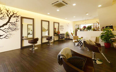 Milbon Hair Colouring / Highlight with Treatment + Stylist Cut + Wash and Blow for 1 Person