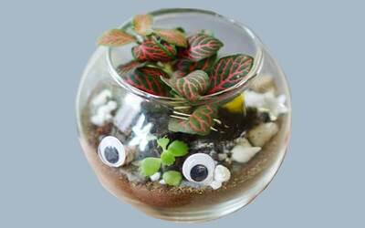 (Sat - Sun) 1-Hour Terrarium Design Workshop + Two (2) Drinks for 2 People