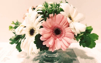 1.5-Hour Mother's Day Gerbera Rose Table Arrangement Workshop for 1 Person