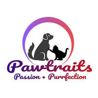 Pawtraits featured image